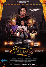 The Enemy I Know movie poster